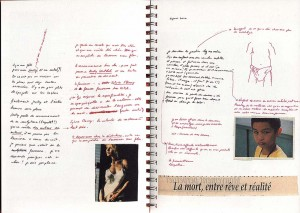 http://joelbartolomeo.net/files/gimgs/th-27_CAHIER_DES_REVES_006.jpg
