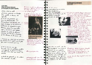 http://joelbartolomeo.net/files/gimgs/th-27_CAHIER_DES_REVES_015.jpg